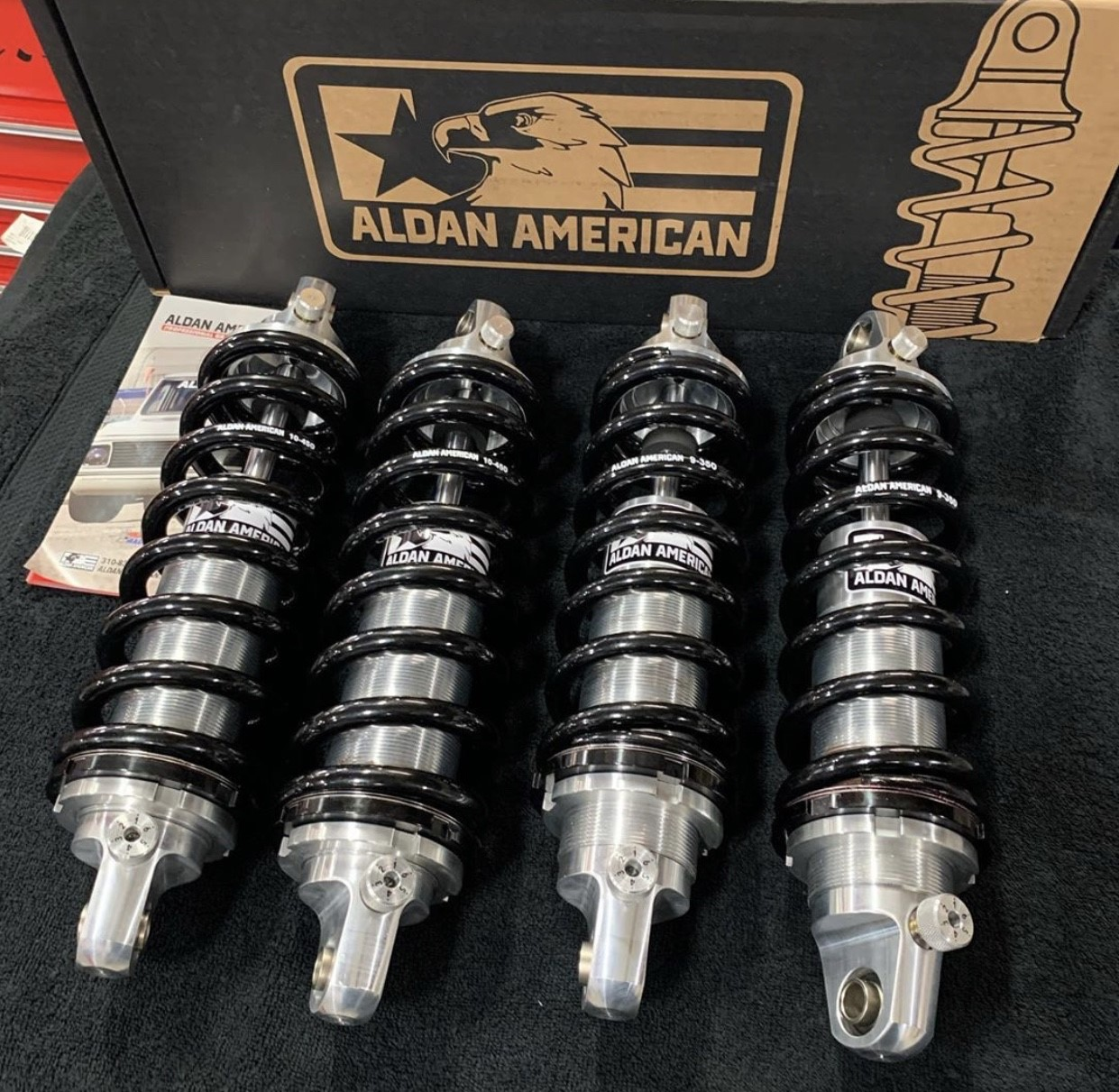 Aldan Double Adjustable Coilover Shocks and Springs